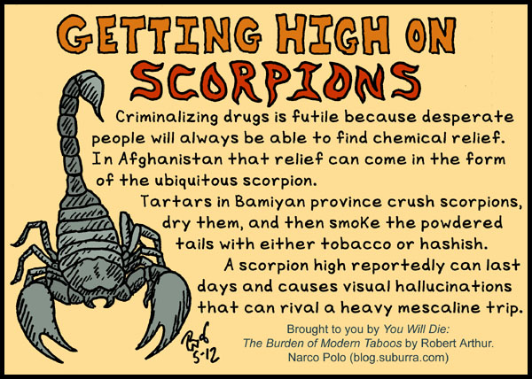 Getting High on Scorpions